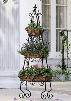 Love this herb garden.