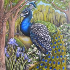 dianeramsey | PanacheFineArt-Colored pencil Drawings-Mi | About