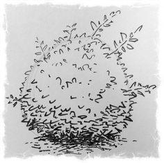 Drawing a Bush with Copic Multiliners — Kris Black Studio . Landscape Sketch, Landscape Elements, Landscape Drawings, Nature Sketch, Nature Drawing, Plant Drawing, Ink Pen Drawings, Realistic Drawings, Tree Sketches