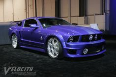 2005 Ford Shelby-West Coast Customs Mustang - Never Mind Ferrari, Mercedes etc, this is the ultimate to make you shine out from the crowd