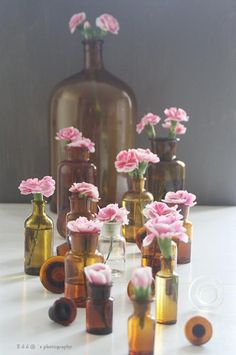 Something so sweet about carnations in these little brown bottles Brown Bottles, Amber Bottles, Bottles And Jars, Amber Glass, Glass Bottles, Glass Vase, Pink Carnations, Pink Flowers, Pink Petals