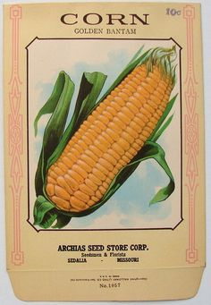 ARCHIAS SEED STORE,  Corn 1057, Vintage Seed Packet, 1920's