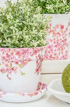 You don't have to be crafty to make these beautiful torn tissue planters. so easy and so pretty! #stonegable #stonegableblog #homedecor #spring #springdecor #springdiy #gardendiy #springdecorating #springdecor