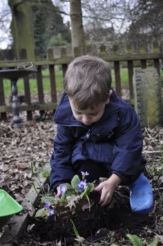 Busy planting flowers in the garden