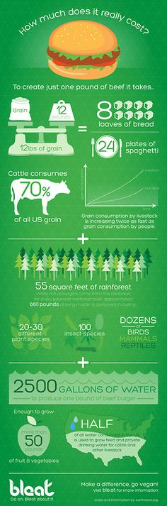 Info graphic: environmental impact of meat. The positive environmental effects of going vegetarian or vegan.