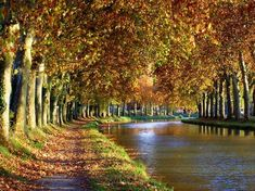 """If you are looking for a quiet path to take a stroll through you are in luck, as the """"Canal du Midi"""" (pictured) is on the way to Toulouse. Le Canal Du Midi, Languedoc Roussillon, Photo Search, Travel Bugs, South Of France, Toulouse, Oeuvre D'art, The Great Outdoors, Beautiful Places"""