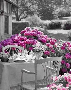 Ana Rosa: Surrounded by stunning hydrangeas for a peaceful dinner. - Me Some Ana Rosa - Outdoor Rooms, Outdoor Dining, Outdoor Gardens, Outdoor Decor, Patio Dining, Dining Room, Beautiful Gardens, Beautiful Flowers, Gorgeous Gorgeous