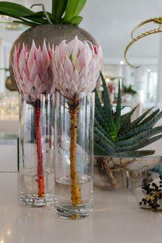 Table Flower Arrangements, Christmas Floral Arrangements, Wedding Flower Arrangements, Table Flowers, Paper Flowers, Protea Art, Protea Flower, Protea Wedding, Wedding Flowers