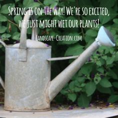 Spring is coming! We're so excited!