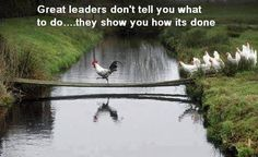 Funny pictures about Great Leaders. Oh, and cool pics about Great Leaders. Also, Great Leaders photos. Farm Animals, Funny Animals, Cute Animals, Funny Birds, Funny Pets, Funny Humor, Gallus Gallus Domesticus, Chickens And Roosters, Pet Chickens