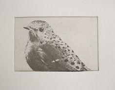 original etching of a spotted bird hand  by fleurografie