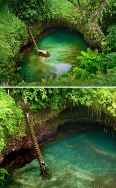 Tosua Ocean Trench / Samoa. Photos by spiceontour and Steven and Darusha on flickr