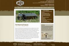 Fink Beef Genetics, modern rustic website design, brown, tan, beige, clean simple website design