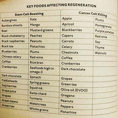 dr wm li cancer and keto diet