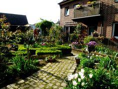 frühlingsgarten im april - Bilder und Fotos
