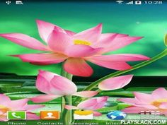 Lotus  Android App - playslack.com , Lotus - pretty live  wallpaper with florals of a lotus. enlivened flying butterflies be if to touch the screen, and enlivened fireflies and flickering sparks will give even more charm.