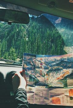 Could be looking at the map on their way to an adventure