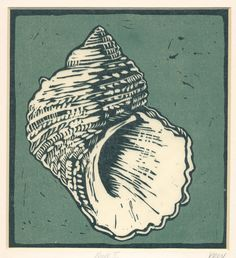 lino cut shells - Google Search