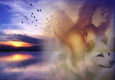 Wolf Spirit, Northern Lights, Angels, Nature, Travel, Naturaleza, Viajes, Angel, Destinations