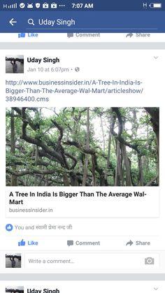 largest banyan tree calcutta
