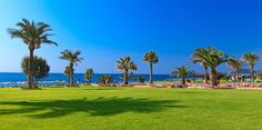 Gardens Rhodes Hotel, Welcome Decor, 5 Star Hotels, Outdoor Pool, Front Desk, Hotel Offers, Public, Wellness, Island