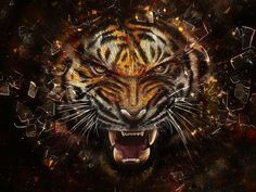 Shop Angry Tiger Breaking Glass Yelow Poster created by RedSamurais. Tiger Artwork, Tiger Painting, Diy Painting, Wild Animal Wallpaper, Leopard Wallpaper, Tiger Images, Tiger Pictures, Dojo, Yin Yang