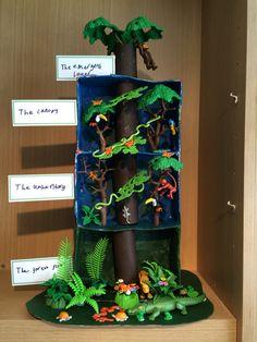 Rainforest in a shoebox Rainforest Preschool, Rainforest Classroom, Rainforest Crafts, Rainforest Project, Rainforest Habitat, Rainforest Animals, Rainforest Ecosystem, Biome Project, Amazon Rainforest