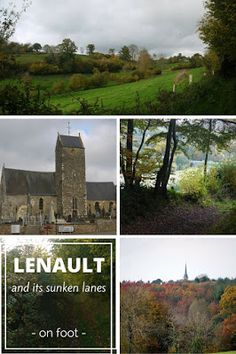 Eco-Gites of Lenault: Guest Post - Sunken Lanes of Lenault