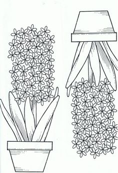 kleurplaat hyacint Coloring Sheets, Adult Coloring, Coloring Pages, Flower Crafts, Flower Art, Embroidery Stitches, Embroidery Patterns, Spring Theme, School Events