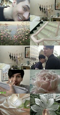 Aesthetic Dan and Phil Moodboard Wallpaper Daniel James Howell, Dan Howell, Dan And Phil Wallpapers, Dan And Phil Cute, Tabinof, Mood Lifters, All The Things Meme, Meme Lord, Phil Lester