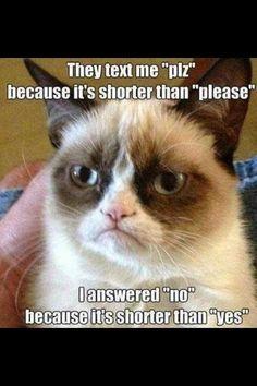 Best Grumpy Cat   the 50 best hilarious grumpy cat memes copyright 50 best