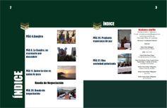 Índice de la revista businessshuffle. volumen 1
