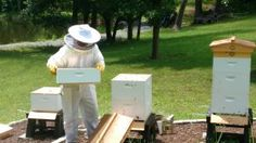 When Beekeeping Goes Wrong:  Unhappy Keeper, Unhappy Bees #beekeeping #feedly