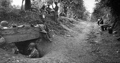 Bocage, Normandy 1944