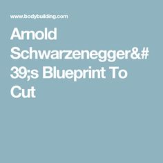 Arnold schwarzenegger blueprint trainer mass nutrition overview arnold schwarzeneggers blueprint to cut malvernweather Images