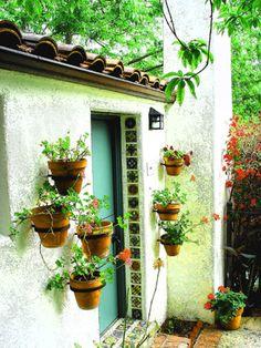 Vertical Garden Ideas Australia horticulture of australia (hal) pot plant vertical garden | garden
