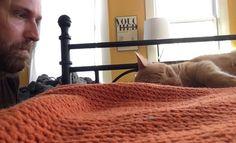 Como se vingar do seu gato >> http://www.tediado.com.br/12/como-se-vingar-do-seu-gato/