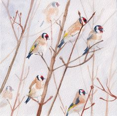 A Charm Of Goldfinches by Dawn Minto Bird Paintings, Goldfinch, Bird Drawings, Painting & Drawing, Dawn, Birds, Charmed, Watercolor, Artist