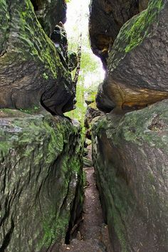 Labyrinth, Bergen, Dresden, The Good Place, Natural Beauty, Germany, Wanderlust, Camping, Places