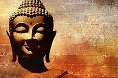 Buddha Bricks