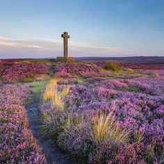 Great article from Visit England says it all.... 8 places to switch off in North Yorkshire