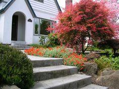 aménagement de jardin extérieur de maison moderne