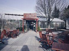 Café Flóran Reykjavik, Beste Cafes in Reykjavik, Best cafe Reykjavik, niedliches Cafe in Reykjavik, gutes Essen Reykjavik, veganes Essen Reykjavik, organic food Reykjavik, süßes Cafe Reykjavik, Cafe Empfehlung Reykjavik, Cafe Botansicher Garten Reykjavik, Lifestyle Blog, Iceland Blog, Island Blog, Like A Riot