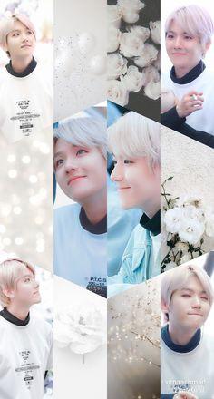 Exo Ot12, Chanbaek, Baekhyun Wallpaper, Exo Lockscreen, Flying Squirrel, Bullet Journal Art, Free Anime, Kawaii Art, Lock Screen Wallpaper