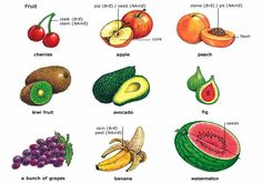 Fruit Vocabulary in English English Food, Learn English, English Lessons, Improve English, English Study, Learning English Is Fun, Food Vocabulary, English Vocabulary, English Idioms