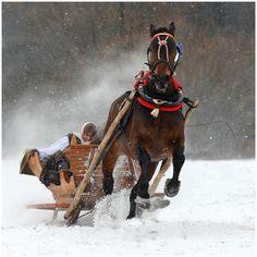 Photo by Wojtek Kwiatkowski, Winter in Poland