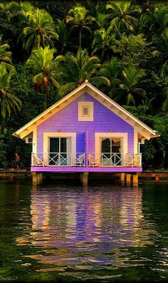 Beach Cottage, Brazil - this is a GREAT purple home, or at least a purple vacation home! Purple Home, Purple Beach, Green Beach, Beautiful Homes, Beautiful Places, Water House, Beach Cottages, Oh The Places You'll Go, Dream Vacations