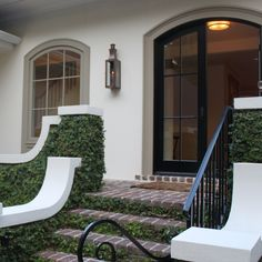 arched doorway, steps softened with greenery