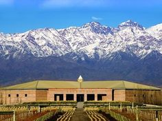 South America Wine Tour | 4* & 5* Chile Argentina Wine Tasting Vacation