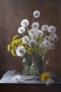 Dandelions by Курочкина Диана